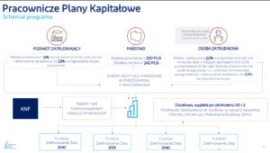 Pracownicze Plany Kapitałowe - jak działają?